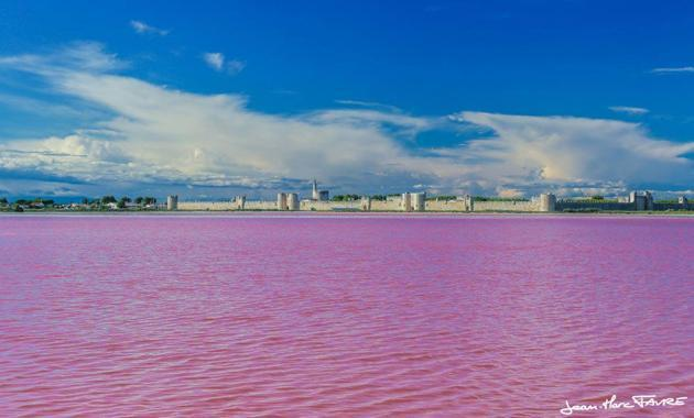 Das Meer ist pink!