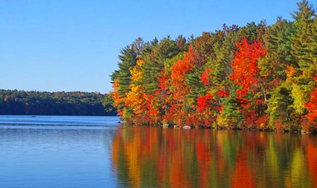 Bunte Bäume in Kanada