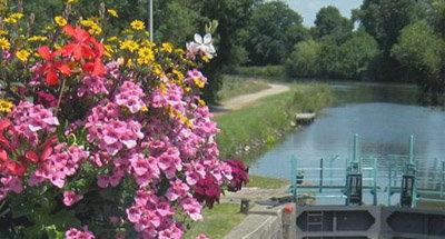Blumen an einer Schleuse in der Bretagne
