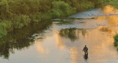 Angler steht im Fluss