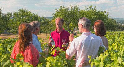 Weinprobe im Burgund