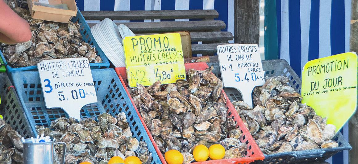 Austern auf dem Markt, Bretagne