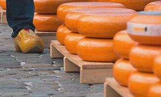 Gestapelter Gouda auf dem Käsemarkt