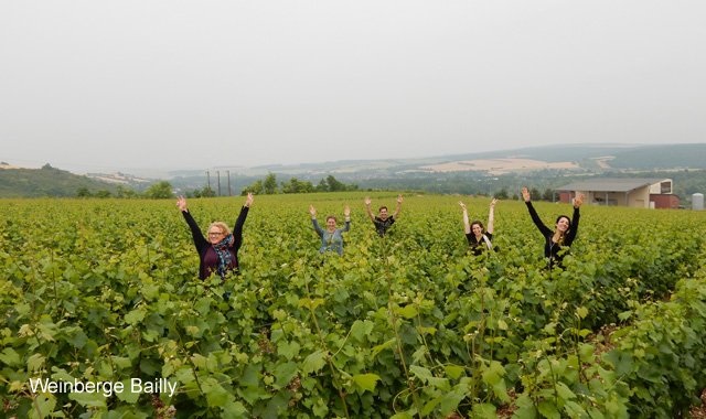Weinberge Bailly